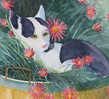 Cat In The Basket by Doris Currier