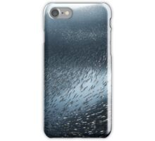 Sardins Ball iPhone Case/Skin