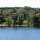 Myponga Reservoir (lower side 2) by ScenerybyDesign
