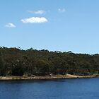 Myponga Reservoir (lower side) by ScenerybyDesign