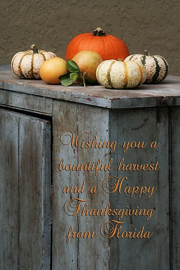 Happy Thanksgiving from Florida by Rita Ballantyne