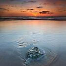 Anglesea Beach Beauty by Neil