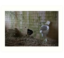 Urinals need a cleaning! Art Print