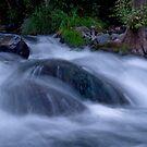 Oak Creek Morning by Wilson Wyatt  Photography