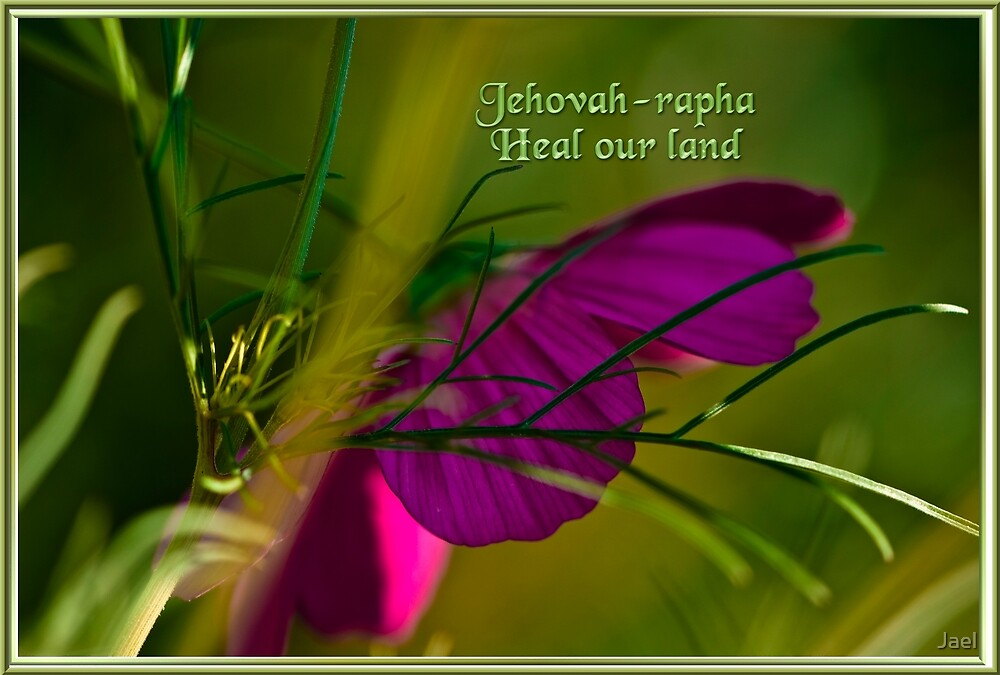 JEHOVAH-RAPHA~ HEAL OUR LAND! by Jael