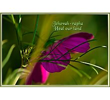 JEHOVAH-RAPHA~ HEAL OUR LAND! Photographic Print