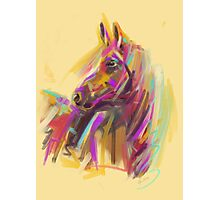 Horse True colours Photographic Print