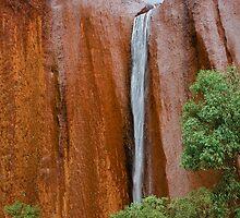 Kantju Gorge - Uluru–Kata Tjuta National Park by D Byrne
