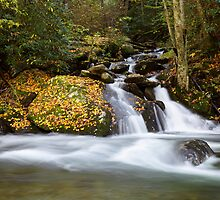 Mannis Branch Falls II by Gary L   Suddath