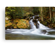 Mannis Branch Falls II Canvas Print
