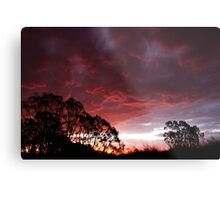 Roaring Sunset Metal Print