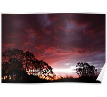 Roaring Sunset Poster