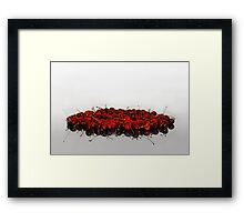 Cherry Blood Framed Print