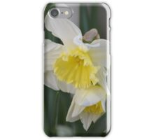 February Silver White & Yellow Daffodil iPhone Case/Skin