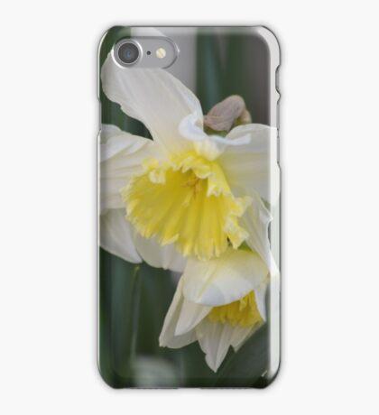 February Silver White & Yellow Daffodil iPhone Case/Skin
