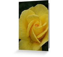 Precious Memories Greeting Card