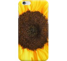 Sun of the bumble bee iPhone Case/Skin