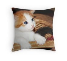 Anybody Out There? Throw Pillow