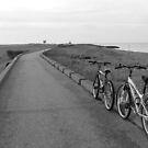 Minnis Bay Bike Ride by groovygreen