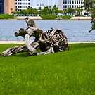 Driftwood of Miami Florida by CDNPhoto