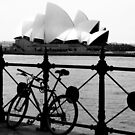 The Cycle and  Sydney Opera House by Eve Parry