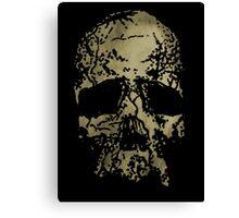 Old-Skull Canvas Print