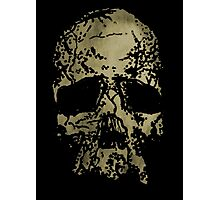Old-Skull Photographic Print