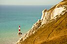 Lighthouse: Beachy Head. East Sussex. UK. by DonDavisUK