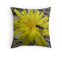 Welcome Aboard! - Launaea angustifolia (Arabian launea) Throw Pillow