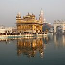 Golden Temple, Amritsar, Punjab, India by RIYAZ POCKETWALA