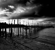 Teluk Bahang Penang Malaysia Monochrome by MiImages