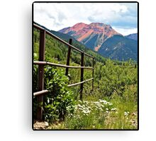 Fence At Ouray Canvas Print