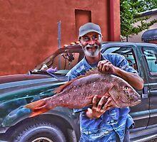 The Fisherman by Scott Mitchell