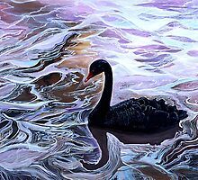 The Black Swan by Milada Kessling
