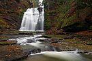 Rexford Falls by Stephen Beattie