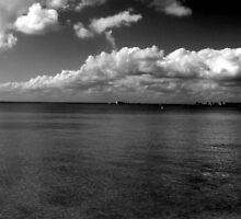 Black and White Beach by ZSUZSA LADO