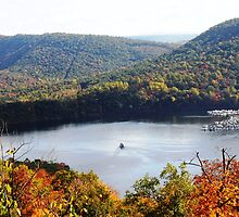 Raystown Lake  by Sherry Hunsberger