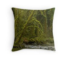 On the Brink....... Throw Pillow