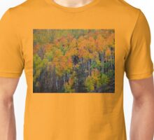 Fall Colors In Colorado Unisex T-Shirt