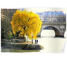 Paris - Le vert Galant. Poster