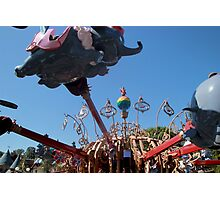When I see an elephant fly! Photographic Print