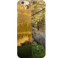 Reflections of Nature vs. Raw Nature  iPhone Case/Skin