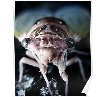 The Locust Poster