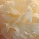 Prom Dress (Peony Petals) - Original Fine Art Photograph by Anne Thea Free