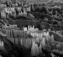 Bryce Canyon in Black and White by Bo Insogna