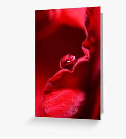 Velvet Red Greeting Card