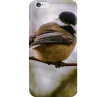 Relationships Are Like Birds iPhone Case/Skin
