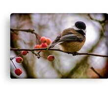 Relationships Are Like Birds Canvas Print
