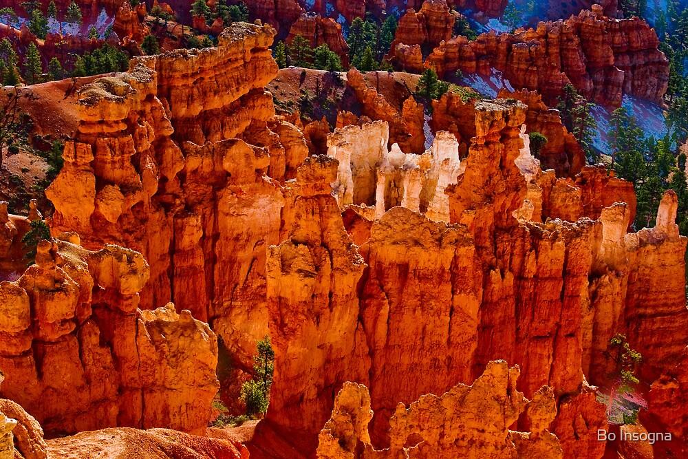 Hoodoos - Bryce Canyon - Utah  by Bo Insogna