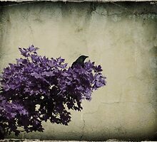 Bird In A Tree by gothicolors